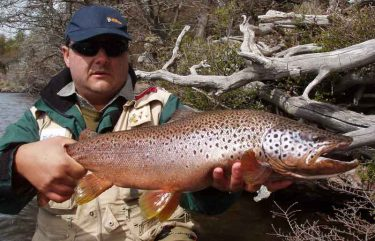 Different Types of Trout And Where To Head To Catch One