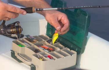 Square-Billed Crankbaits - Tips for Fishing in Florida