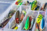 The Ultimate Guide to Choosing Colors for Crank Baits