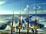 5 Must-Know Offshore Fishing Tips You Need For Success