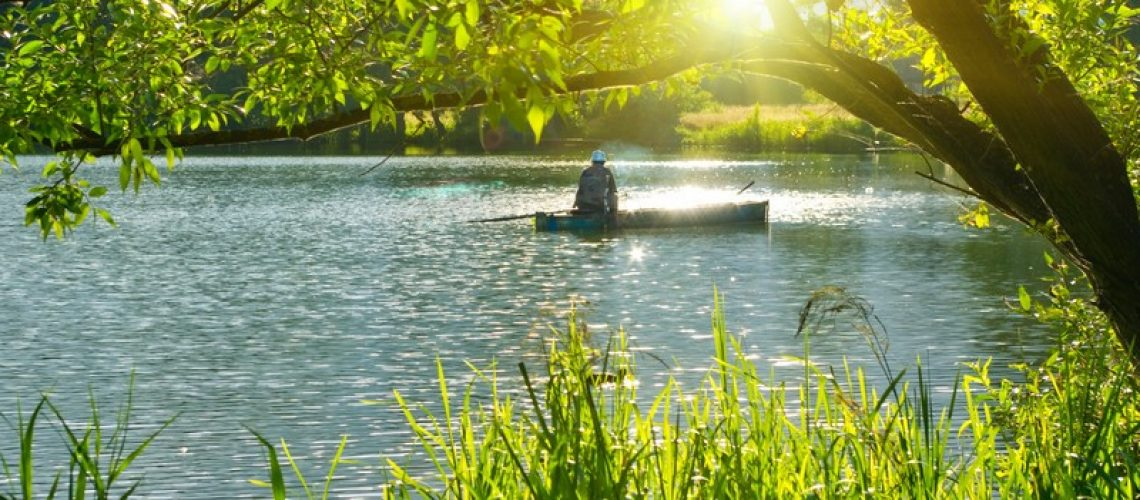 A Complete Guide to Fishing With Spinner Rigs - Yellow Bird