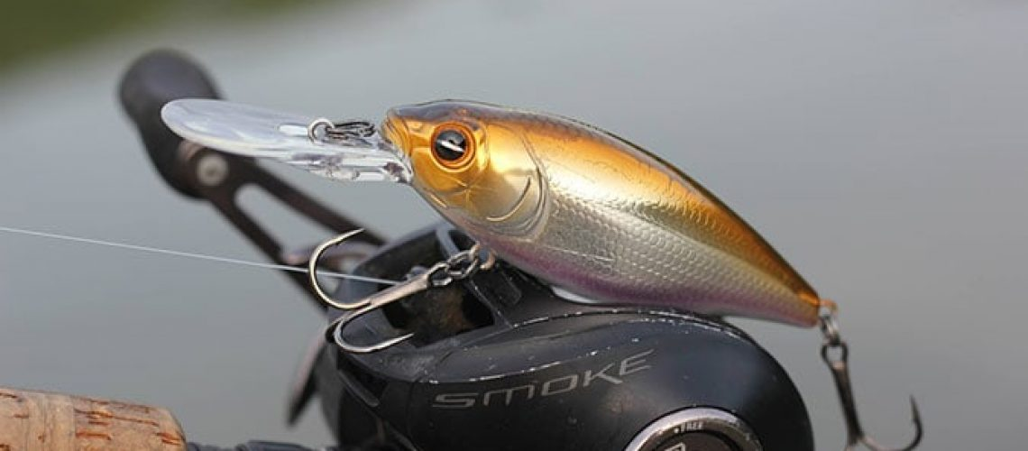 Guide to Buying Crankbaits